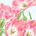 Art Drawing - Tulips - Flowers